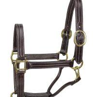 New Handmade Derby Originals High Quality Leather Elegance Triple Stitch Halter