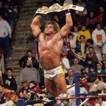WWE White Winged Eagle Championship Replica Title