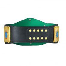 WWE European Championship Replica Title