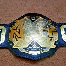 WWE NXT Wrestling Championship Belt Replica Adult Size