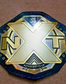 WWE NXT Wrestling Championship Belt Replica Adult Size
